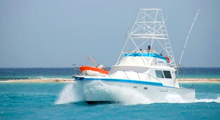 Marbella Boat, Yacht & Fishing Charters